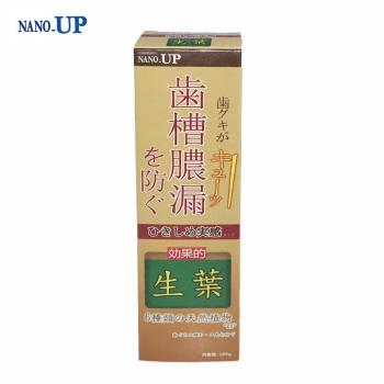 NANO-UP 韩方生叶牙膏100G*2