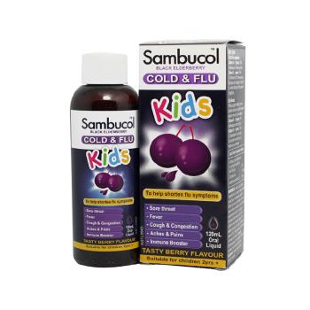 保税区直发 Sambucol小黑果 黑接骨木儿童浆果味糖浆 120ml