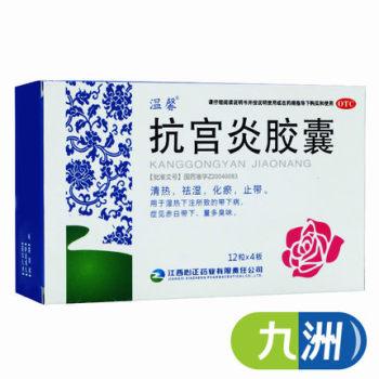 溫馨抗宮炎膠囊0.5g*48粒