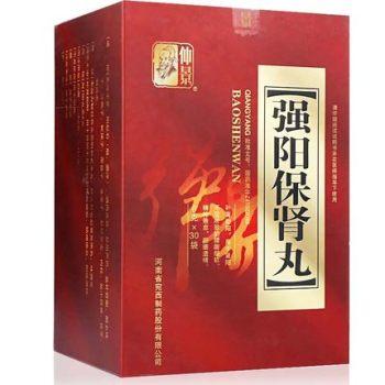 仲景强阳保肾丸6g*30袋