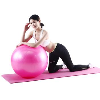 宏太HTASK NBR瑜伽垫健身+直径65cm光滑瑜伽球 HT-01YP